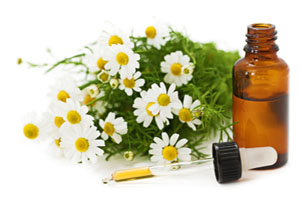 Herbal Medicine: Chamomile